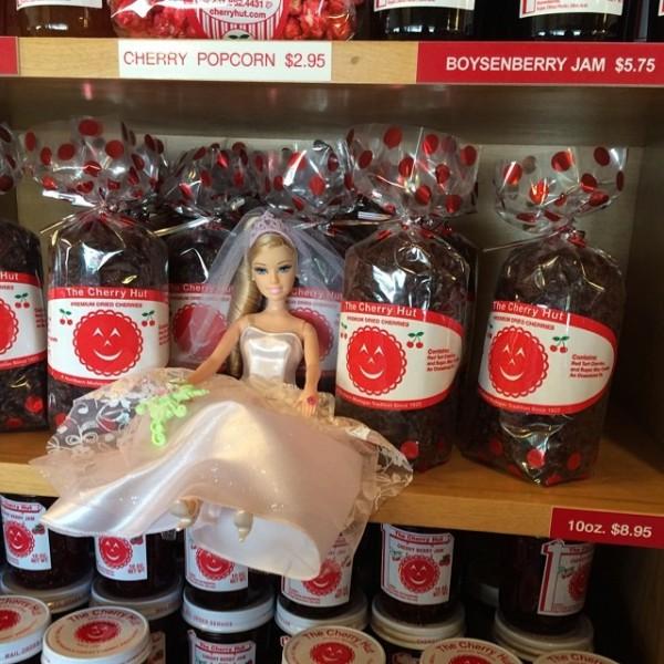 Katie Barbie Cherryhut 2